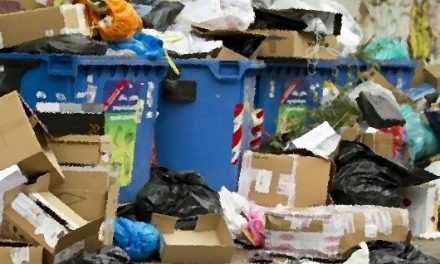Food security: demand, consumption and waste report published